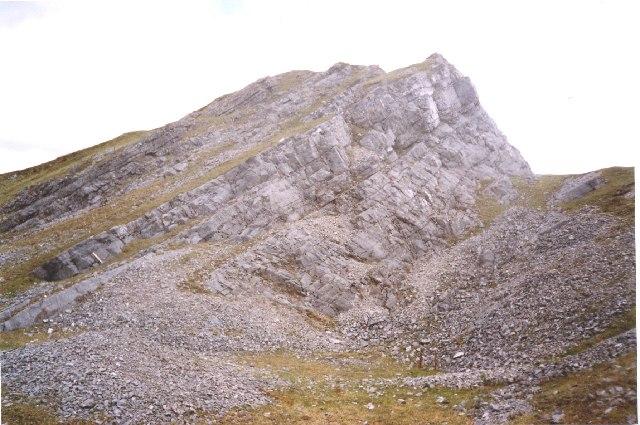 Limestone with chert
