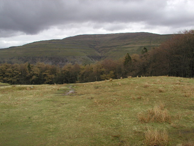 Buckden Pike from just west of Water Gill Wood