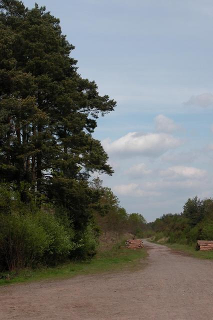 Dismantled railway, Longmoor