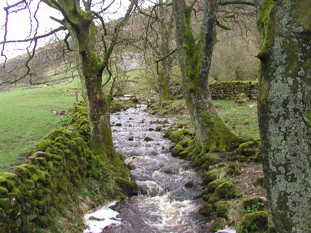 In Upper Wharfedale