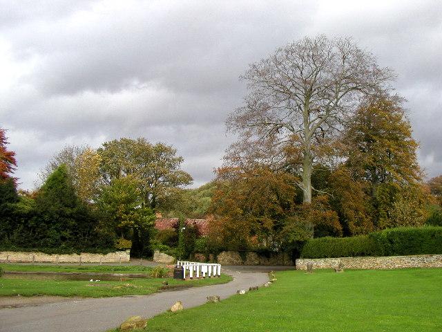 Brantingham Village Green