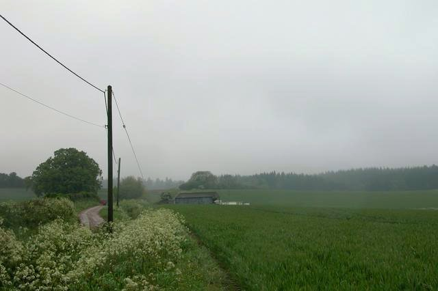 Looking across farmland to Tipsall