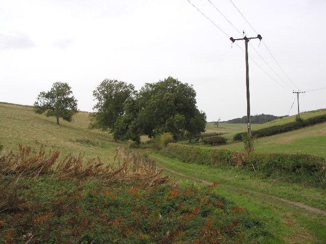 Bridle path at Wauldby Scroggs