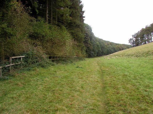 Upper Weltondale