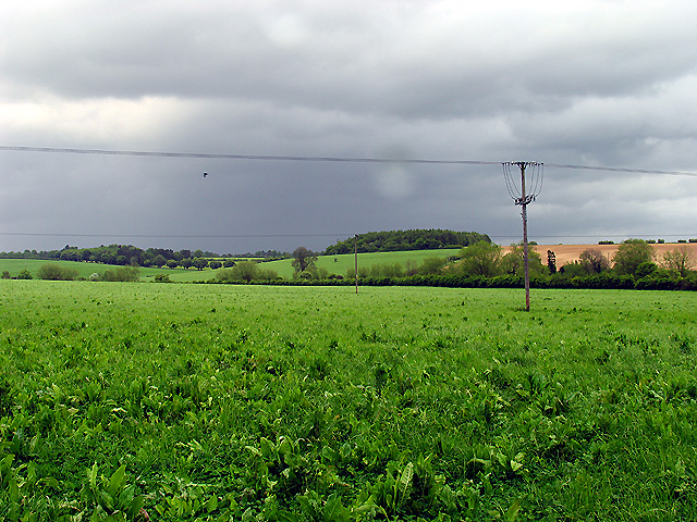 Farmland near Hampstead Norreys