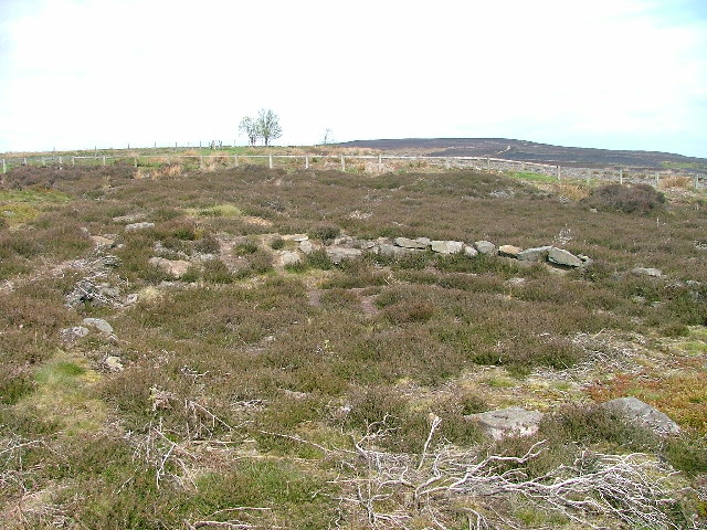 Iron Age Hut Circles