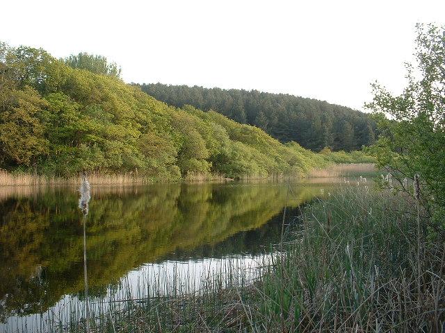 Llyn Carreg Wen, near Porthmadog