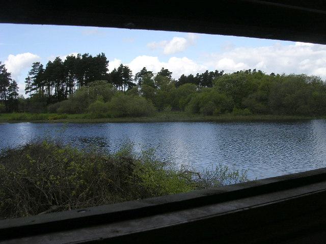 Crombie Reservoir  from the bird hide!