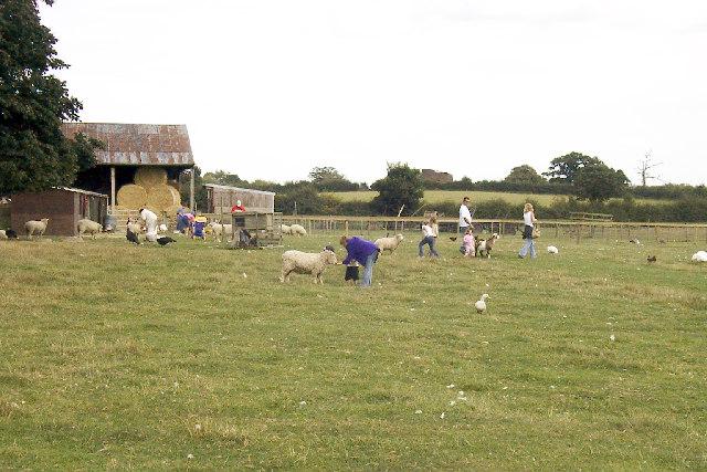 Cruckley Farm