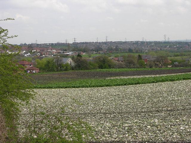 Farmland, Wakefield