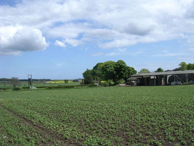 Carlungie Farm