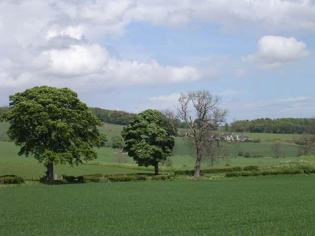 View to Old Downie farm