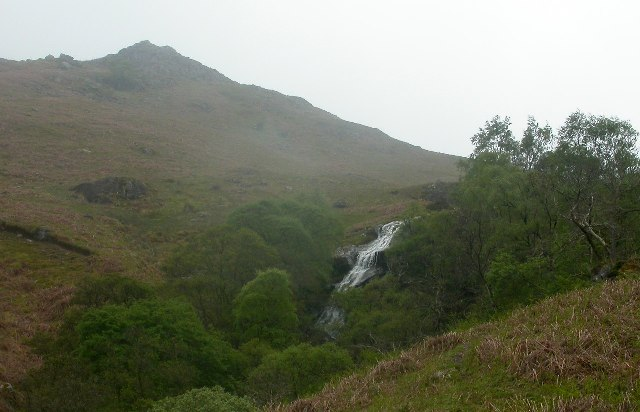 Scalehow Force