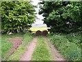 SE8822 : No Through Road by Steve Parker