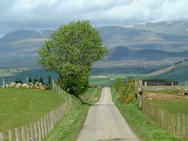 Road through Ross-shire countryside