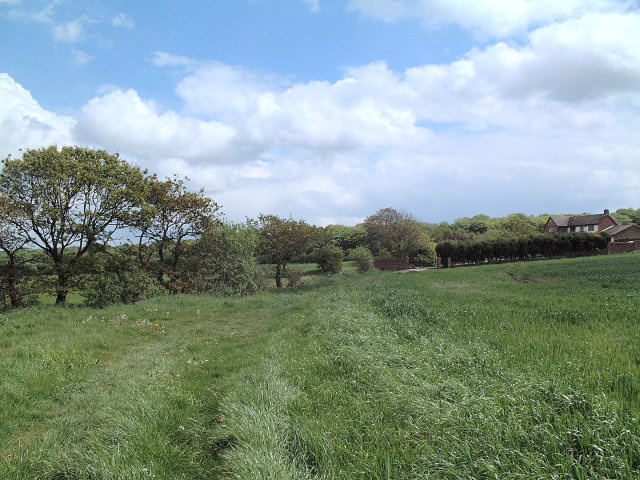 Farmland to the west of Bispham Hall - Billinge