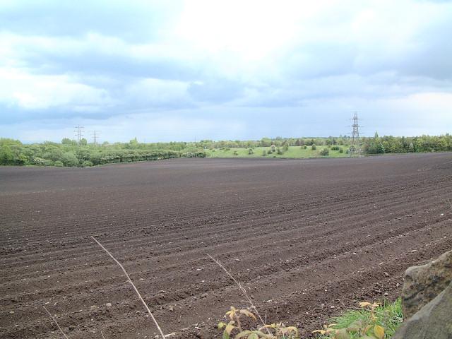 Farmland in Upholland
