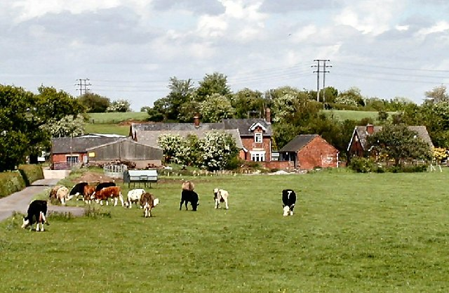 Bellington Farm