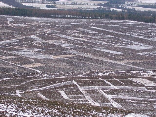Muirburn patterns, Feuar's Moor