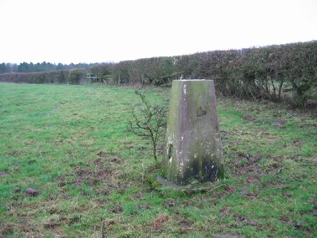 Petton trig point