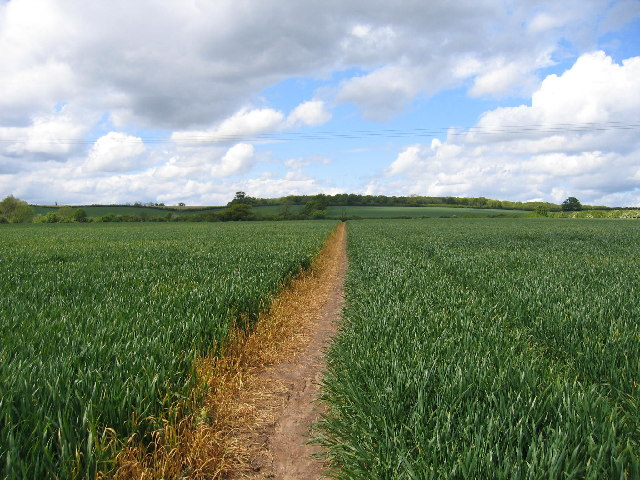 Footpath to Cubbington