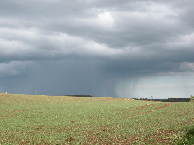 Rain over farmland, Aberdeenshire