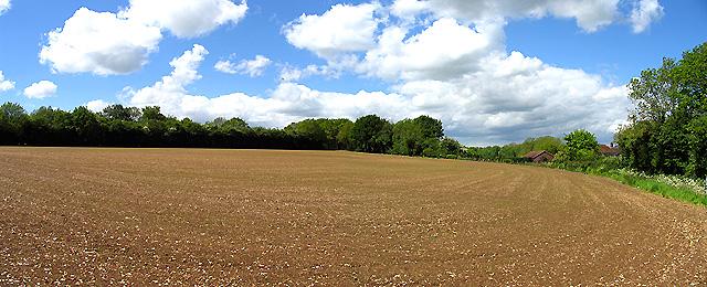 Woodspeen Farm: Ploughed field
