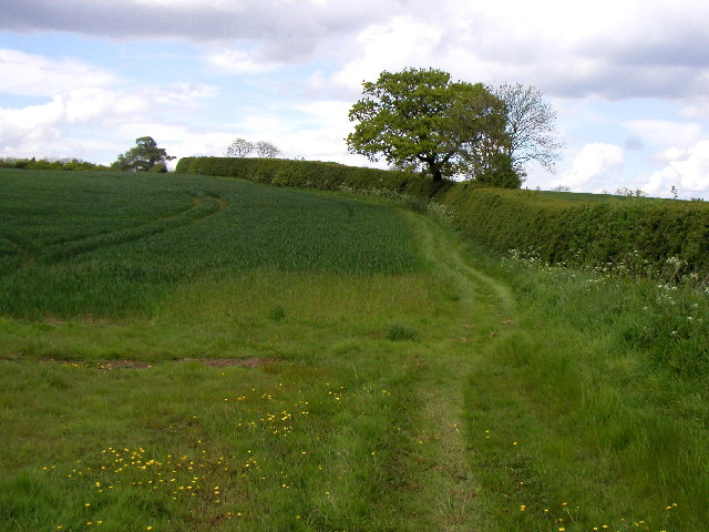 Roe Hill