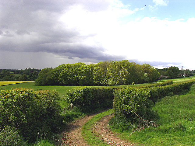 Farmland near Wickham
