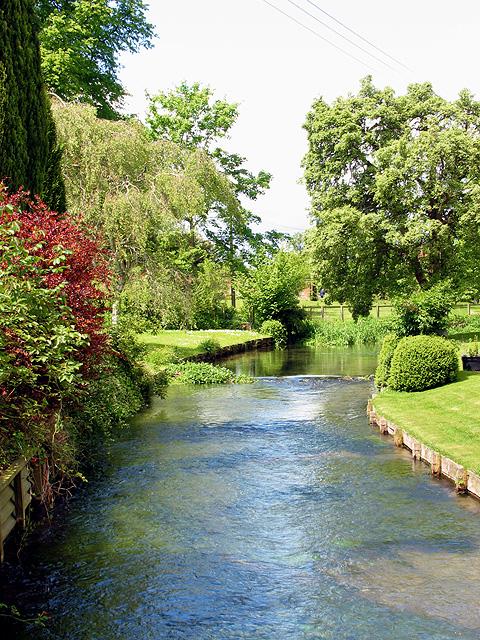 The Lambourn River