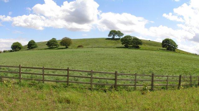 Hamilton Hill