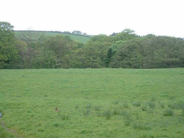 Farmland, looking towards Curwen Wood, near Garstang