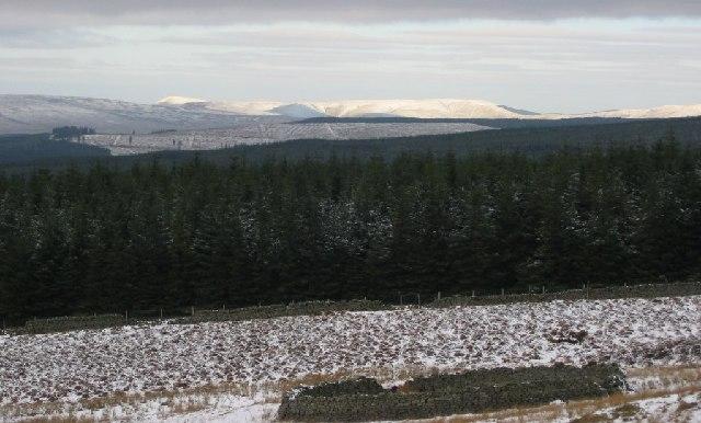 Sheep fank, Long Crag