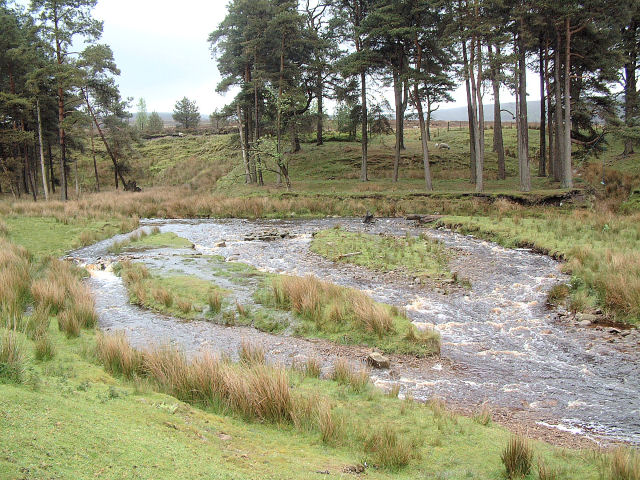 Braided Channels at Marshaw Wyre © Gary Rogers :: Geograph ...