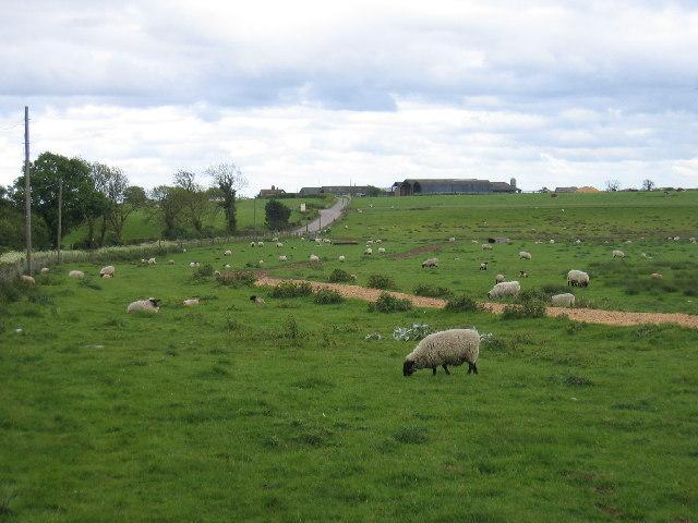 Ufton Hill Farm