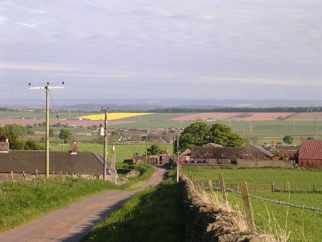 Balcalk Farm near Tealing
