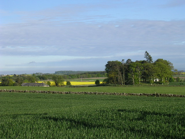 Farmland north of Tealing