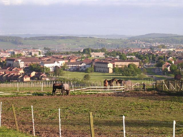 'Horsiculture' at Middleton farm