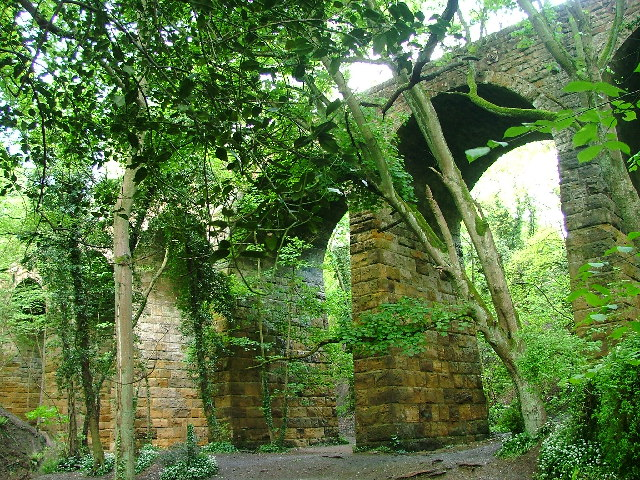 Waterfall Viaduct, nr Guisborough