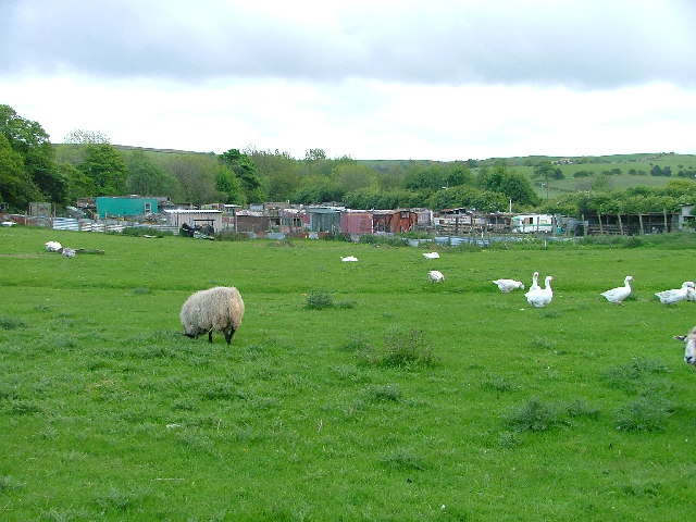 Allotments, Charltons