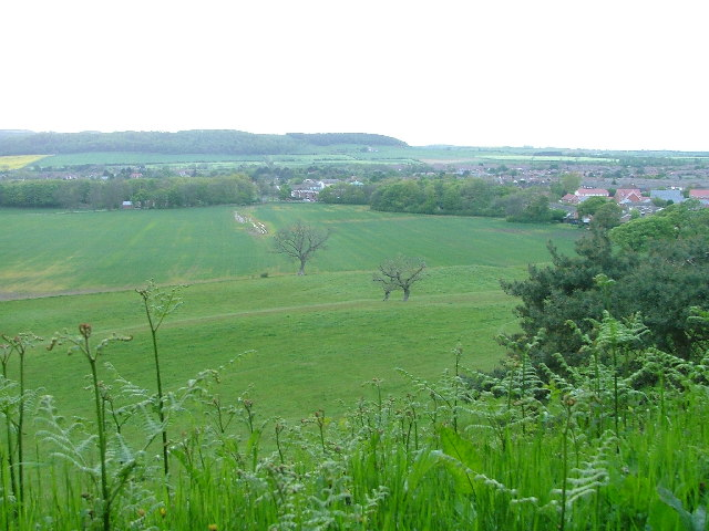 Hutton Hall Fields