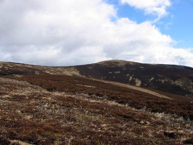 Moorland on Hill of Wirren