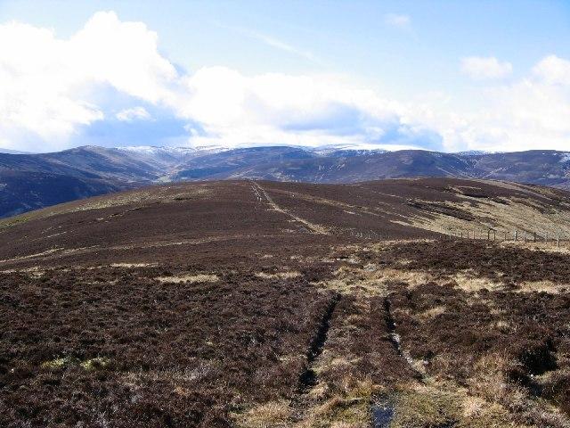 Ridge on Hill of Wirren.