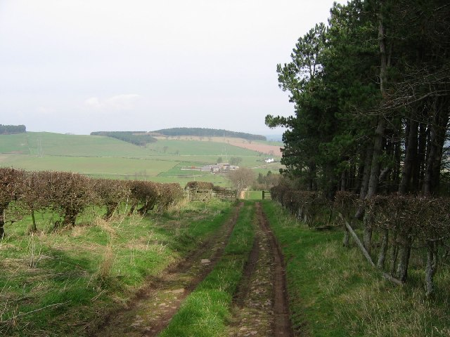 Farm track, Kypie