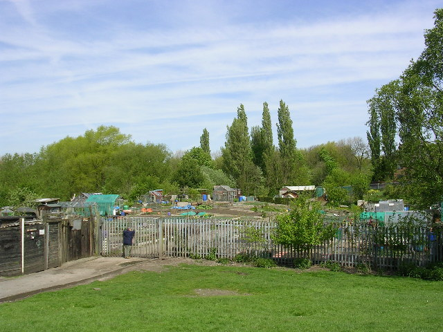Allotments, near Moston Manchester.