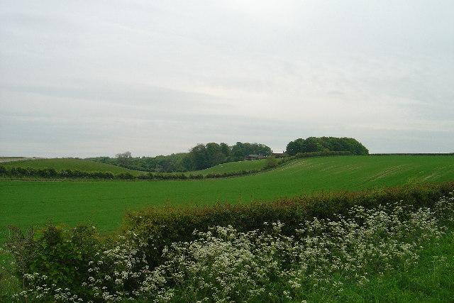 Holmedale Farm