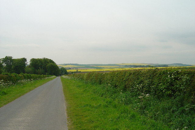 Country lane near South Dalton Wold