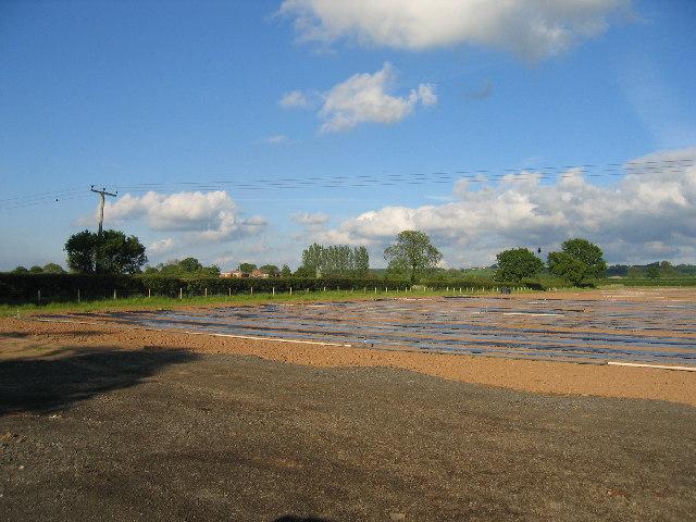 Lower Fosse Farm