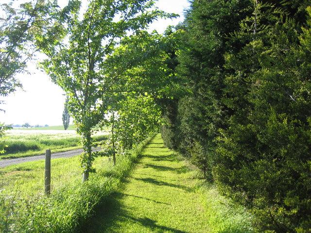 Harbury - Radford Semele footpath