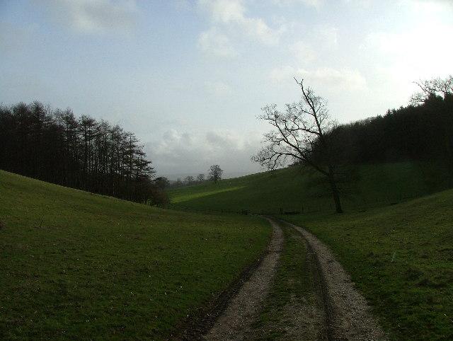 Bridleway Track through Eastwell Park near Challock